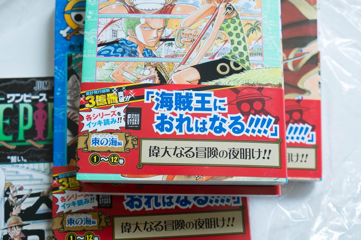 one piece japanese-7